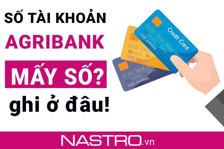 [Cập nhật] Số tài khoản Agribank có bao nhiêu số, ghi ở đâu?